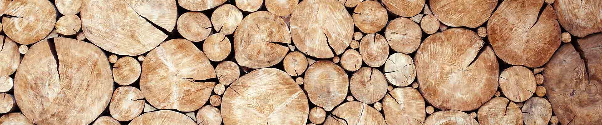 Grupo Gamiz, especialistas en madera.